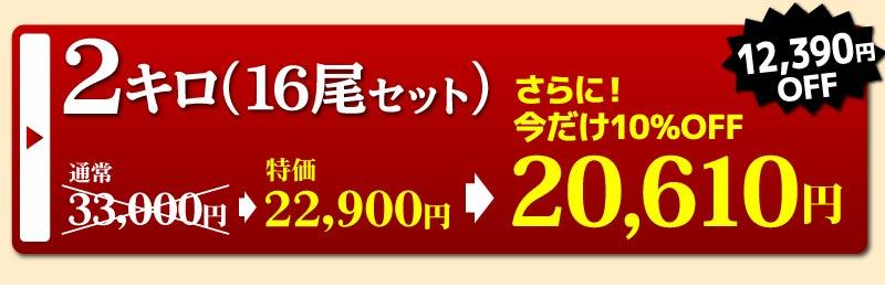 蒲焼2キロ