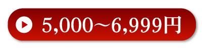 5000〜6999円