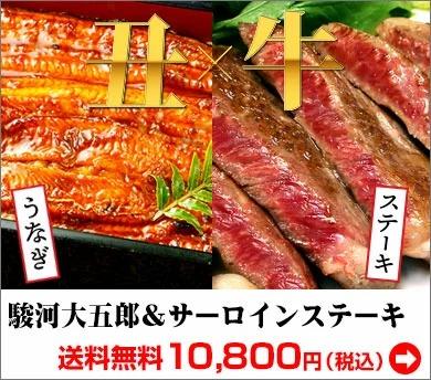 国産うなぎ蒲焼駿河大五郎&ローストビーフ